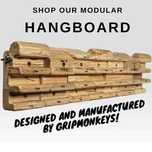 Gripmonkeys Hangboard